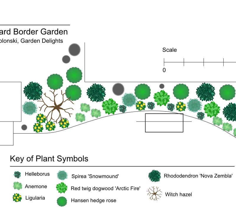 Border Shade Garden Flora Nova Designs