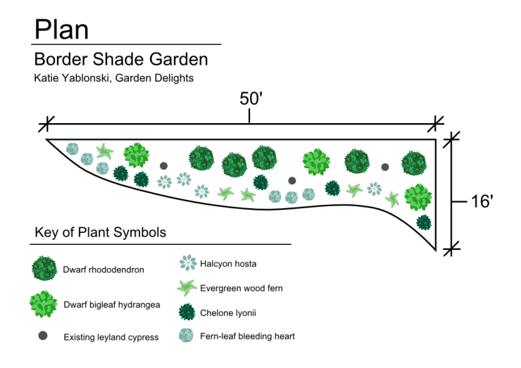A luscious shade garden created to fill a bare area under a row of leyland cypress trees.