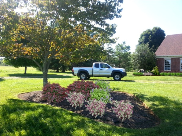 Digital rendering created with Realtime Landscaping Photo software