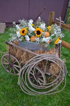 A large arrangement in a metal basin near the barn.